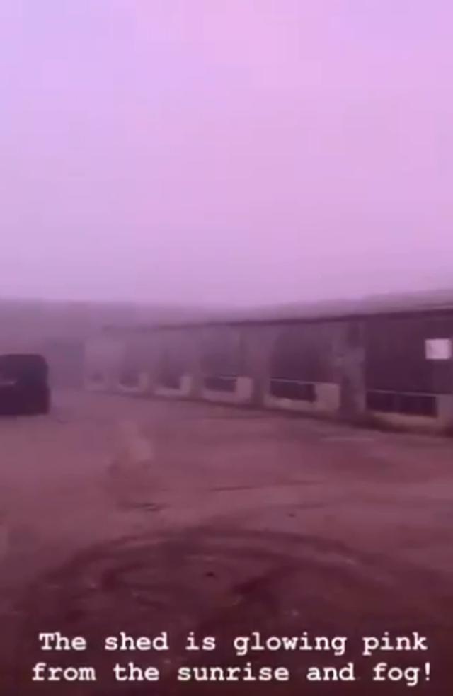 Kỳ quái hiện tượng sương mù màu hồng ở Anh - 1