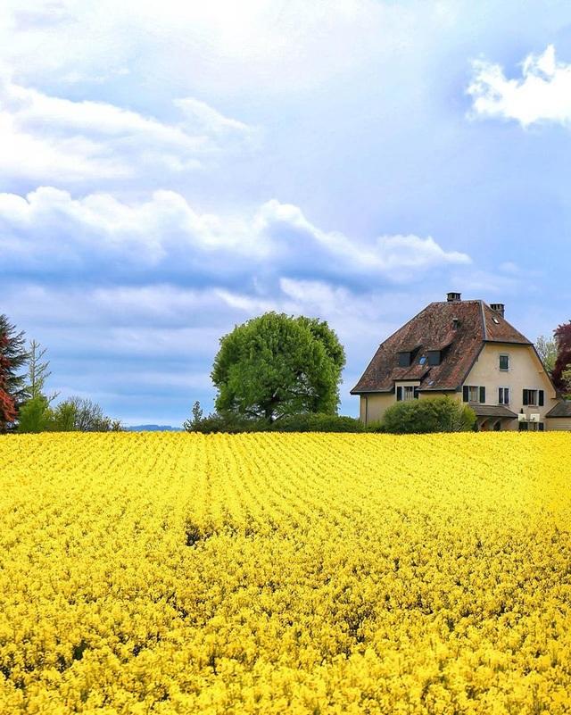 10 địa điểm đẹp nhất thế giới nên đến trong mùa xuân - 1