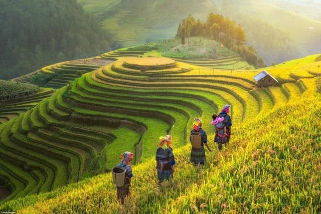 Cảnh sắc Việt Nam quyến rũ và thân thương trên hàng loạt các trang báo nước ngoài - 3