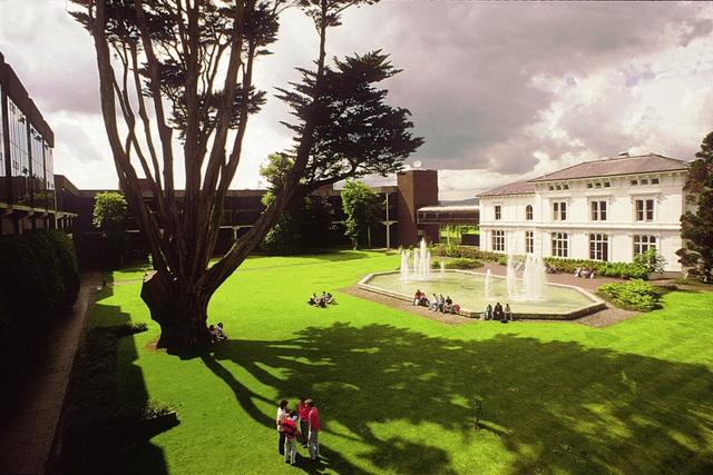 Khởi đầu ước mơ cùng Đại học Limerick (Ireland)- Cơ hội làm việc tại tập đoàn đa quốc gia - 4