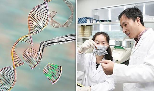 """Các em bé biến đổi gene có thể thành… """"siêu nhân"""" với bộ não được tăng cường - 1"""