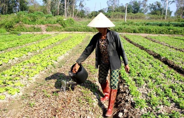 Bọt lạ nổi trắng kênh Phú Ninh