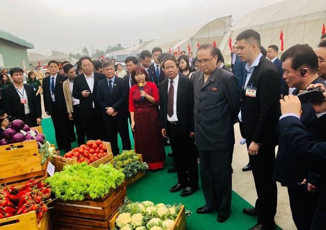 Đoàn Triều Tiên thăm tổ hợp sản xuất ô tô, nông nghiệp công nghệ cao tại Hải Phòng - 9