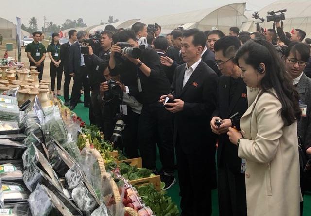 Đoàn Triều Tiên thăm tổ hợp sản xuất ô tô, nông nghiệp công nghệ cao tại Hải Phòng - 7