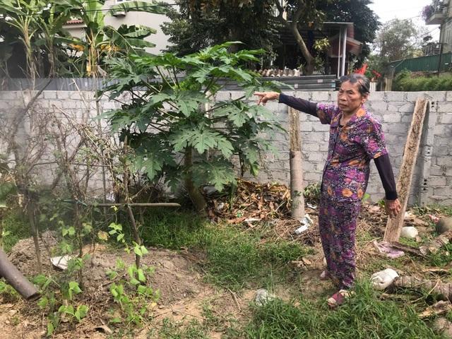 Cụ bà 80 tuổi còng lưng đi đòi công lý suốt 18 năm tại Nghệ An! - 3