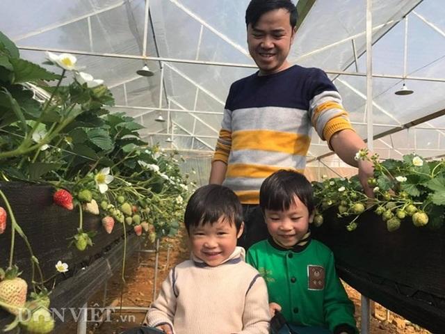 Bỏ việc nhà nước, cắm sổ đỏ trồng dâu tây, khách nườm nượp - 2
