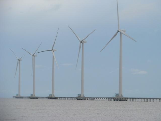 """""""Cánh đồng điện gió"""" Bạc Liêu trở thành điểm du lịch tiêu biểu ĐBSCL - 10"""