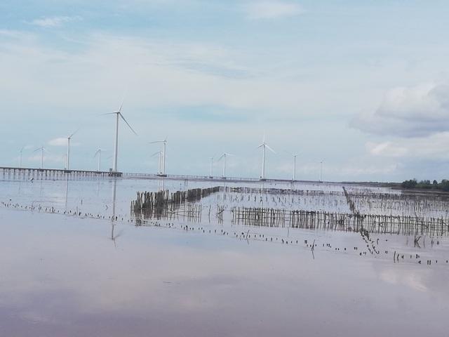 """""""Cánh đồng điện gió"""" Bạc Liêu trở thành điểm du lịch tiêu biểu ĐBSCL - 6"""
