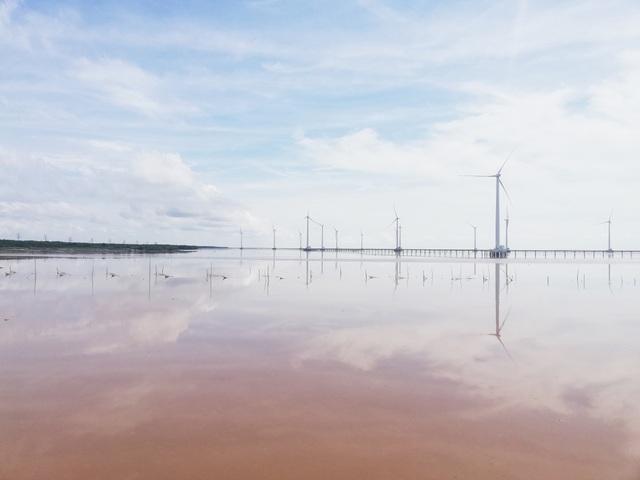"""""""Cánh đồng điện gió"""" Bạc Liêu trở thành điểm du lịch tiêu biểu ĐBSCL - 4"""