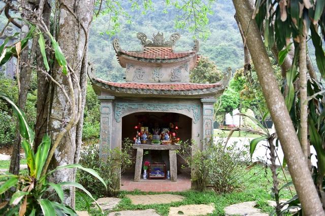 Kỳ lạ cây đa di chuyển ở Ninh Bình - 3