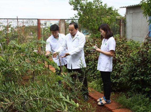 Đông Y Thanh Tuấn 8 năm một hành trình vì sức khỏe cộng đồng - 2