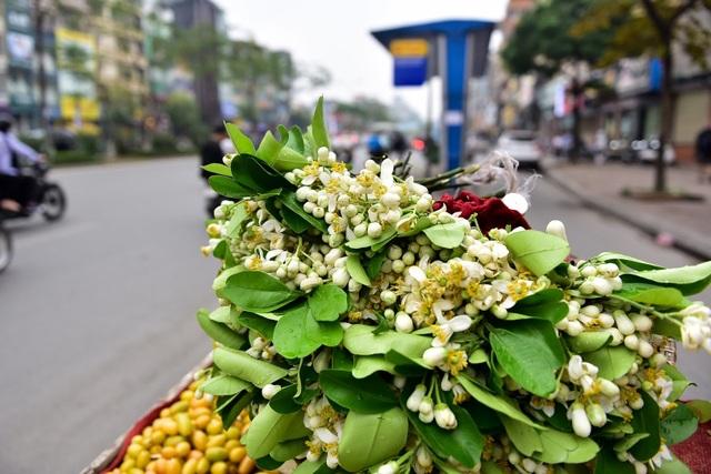 hoa buoi - 8