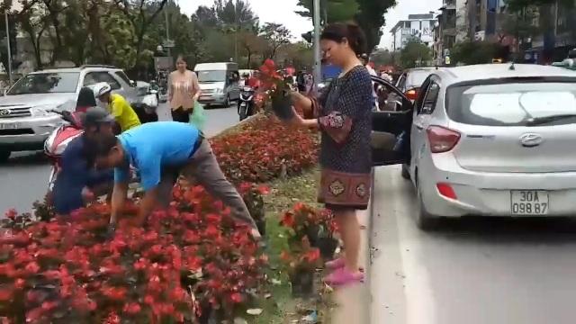 Hà Nội: Ngao ngán với cảnh người dân hôi... hoa trên đường Kim Mã - 2