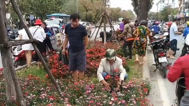 Hà Nội: Ngao ngán với cảnh người dân hôi... hoa trên đường Kim Mã - 3