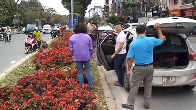 Hà Nội: Ngao ngán với cảnh người dân hôi... hoa trên đường Kim Mã - 1