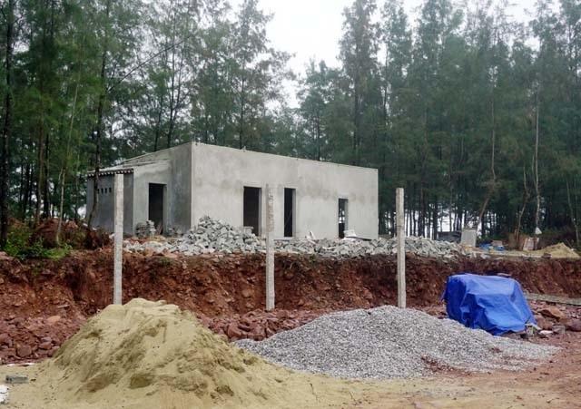 Vụ đào ao nuôi tôm, phá rừng phòng hộ: Dỡ nhà vi phạm, buộc trồng lại cây - 1