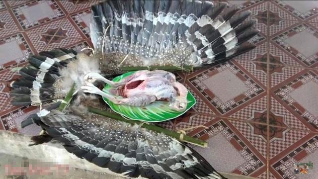 """Vụ chim quý bị làm thịt: Hai anh em """"Tam Mao"""" lên tiếng xin lỗi - 2"""