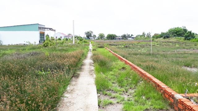 Cà Mau: Công dân tố cáo sai phạm đất đai, Chủ tịch huyện bị kiểm điểm - 1