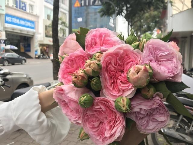 10 loại hoa hồng đắt đỏ dịp 8/3 khiến chị em mê mẩn - 5