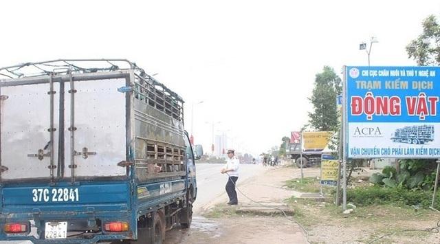 Chống dịch tả lợn châu Phi: Từ chốt chặn ở cửa khẩu đến ngoại bất nhập các chuồng trại - 5