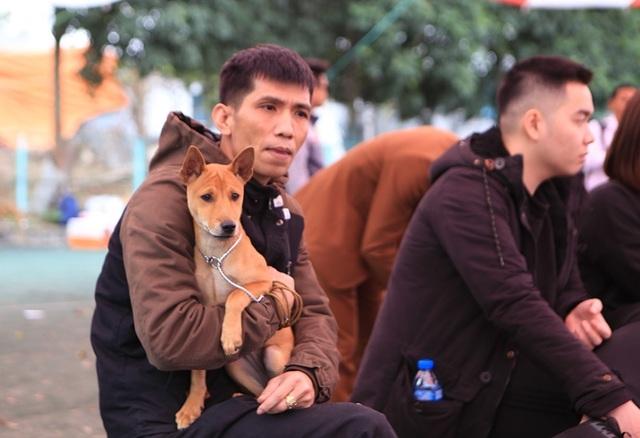 Hơn 250 chú chó bản địa tham gia hội thi sắc đẹp ở Hà Nội - 8