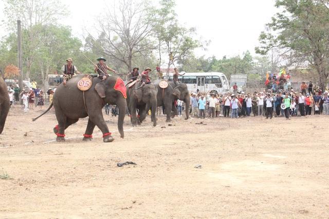 Đắk Lắk: Tưng bừng hội đua voi Buôn Đôn - 2