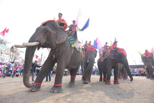 Đắk Lắk: Tưng bừng hội đua voi Buôn Đôn - 1