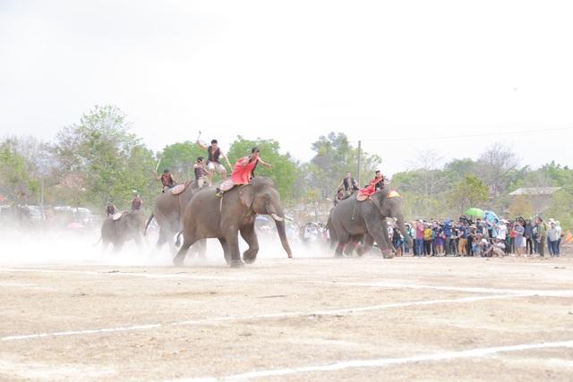 Đắk Lắk: Tưng bừng hội đua voi Buôn Đôn - 3