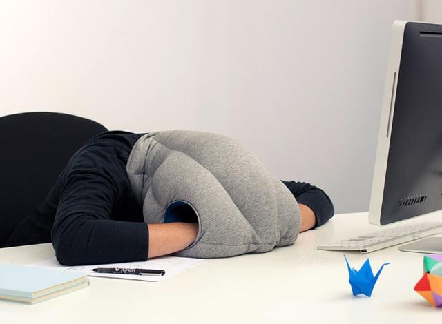 Nhân viên văn phòng chứng minh tầm quan trọng của giấc ngủ trưa - 1