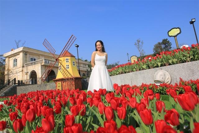 Vòng quanh thế giới ngắm những vườn tulip vạn người mê 1.jpg