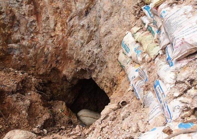 Nhiều đối tượng đào hàng loạt hang sâu bí ẩn trên đất trồng keo của dân tại Bình Định! - 2