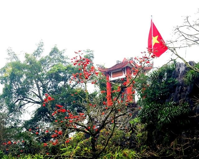 """Hoa gạo """"thắp lửa"""" khắp núi rừng Hương Sơn - 3"""