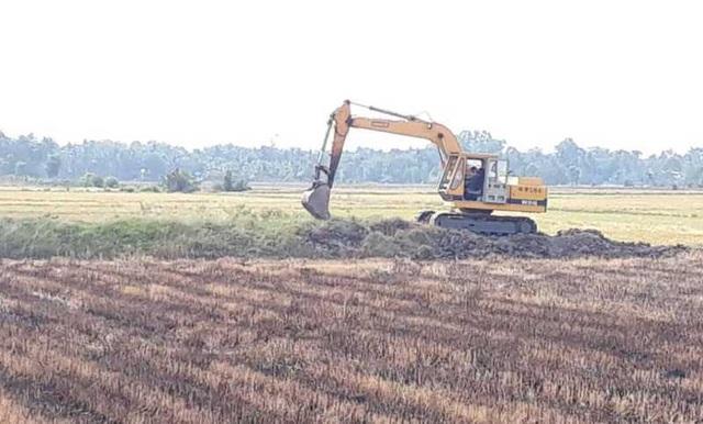 Nhiều xe cơ giới xuất hiện trên cánh đồng để khai thác đất mặt