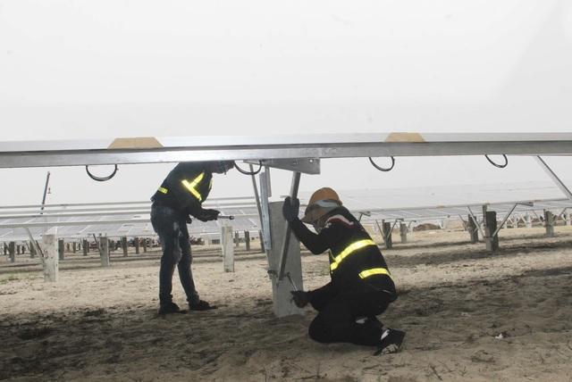 """Dự án điện mặt trời ngàn tỷ, kỳ vọng """"biến cát trắng… đẻ ra tiền""""  - 5"""