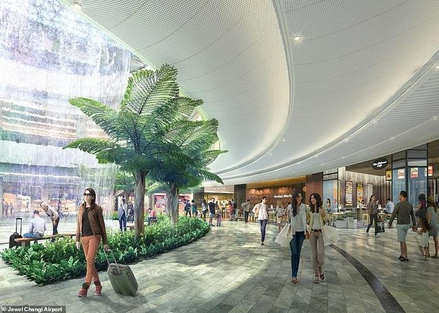 Sân bay Singapore mở cửa khu rừng và thác nước nhân tạo lớn nhất thế giới - 1