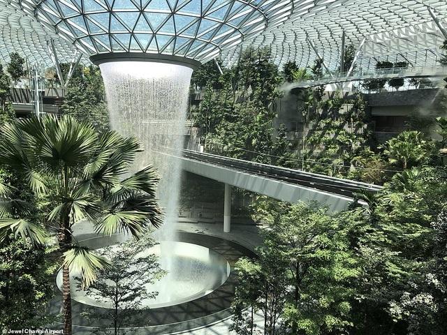 Sân bay Singapore mở cửa khu rừng và thác nước nhân tạo lớn nhất thế giới - 2