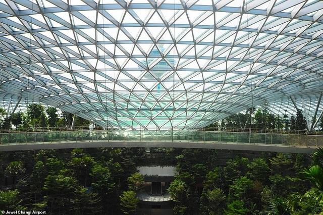 Sân bay Singapore mở cửa khu rừng và thác nước nhân tạo lớn nhất thế giới - 4