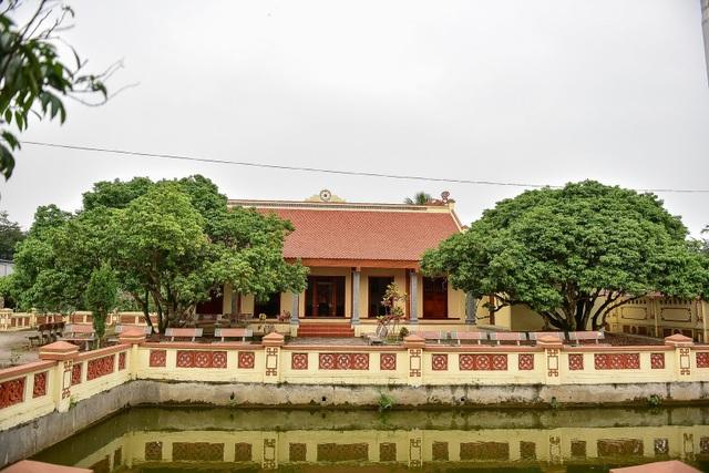 Bí ẩn cây vải tổ 200 năm được xác lập kỷ lục lâu đời nhất Việt Nam - 14