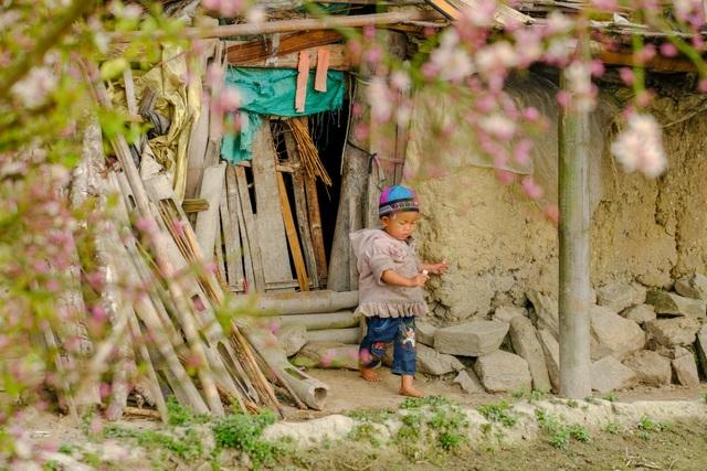 Những bức ảnh khiến ai cũng muốn đi Hà Giang tháng 3 này - 3