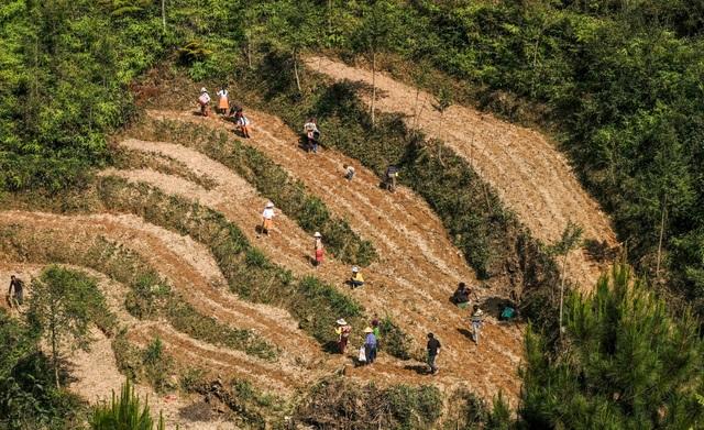 Những bức ảnh khiến ai cũng muốn đi Hà Giang tháng 3 này - 9