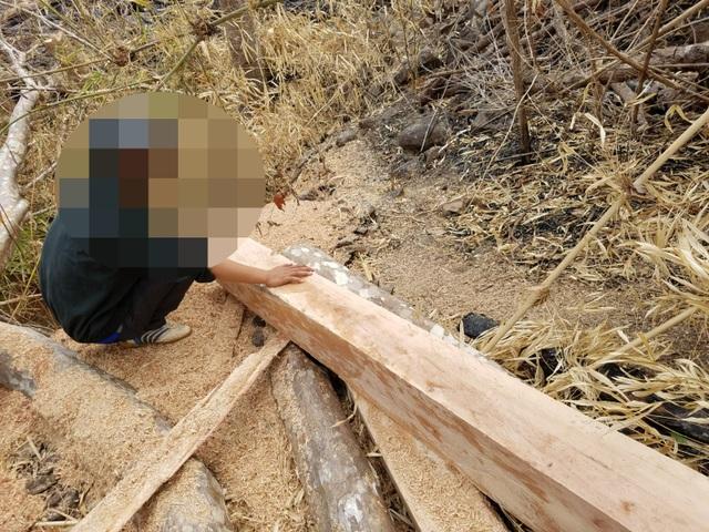Hoang tàn cảnh tận thu gỗ, phá rừng làm rẫy ngay cách trạm quản lý bảo vệ rừng - 4