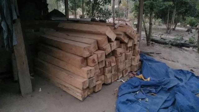 Hoang tàn cảnh tận thu gỗ, phá rừng làm rẫy ngay cách trạm quản lý bảo vệ rừng - 5
