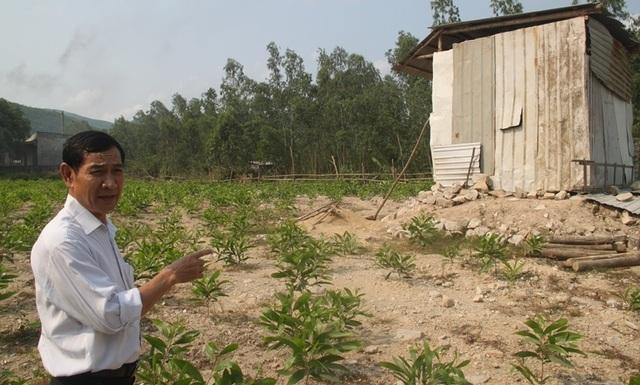 Thực hư việc doanh nghiệp xây dựng nhà xưởng trên đất của dân ở Bình Định! - 1