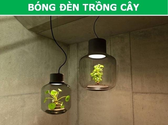 Những phát minh tuyệt vời thân thiện với môi trường... và cả con người! - 1