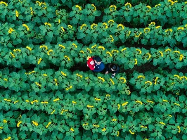 Tác phẩm của nhiếp ảnh gia người Việt lọt top 12 bức đẹp nhất trên National Geographic - 1