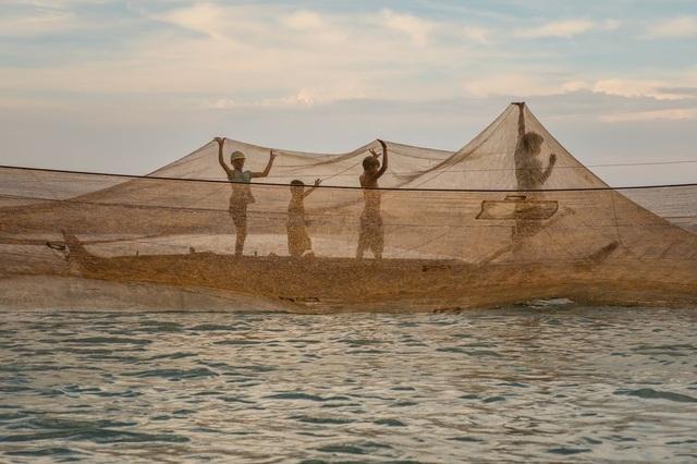 Tác phẩm của nhiếp ảnh gia người Việt lọt top 12 bức đẹp nhất trên National Geographic - 5