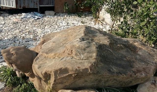 """Ảnh: Cận cảnh rùa đá """"Hồn thiêng đất Việt"""" nặng 20 tấn, 600 triệu không bán - 3"""