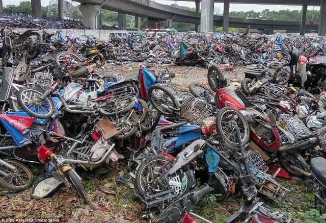 Cận cảnh nghĩa địa xe máy khổng lồ tại Trung Quốc - 6