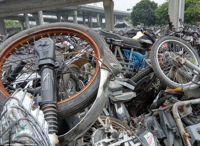 Cận cảnh nghĩa địa xe máy khổng lồ tại Trung Quốc - 7