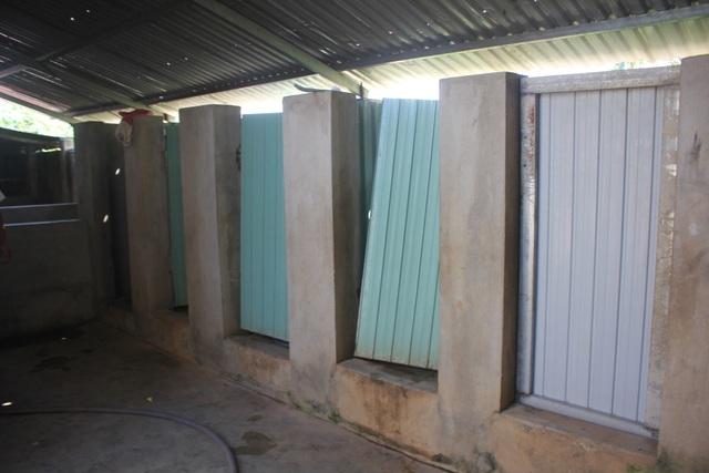 Chung tay xây dựng nhà vệ sinh trong trường học vùng cao - 2